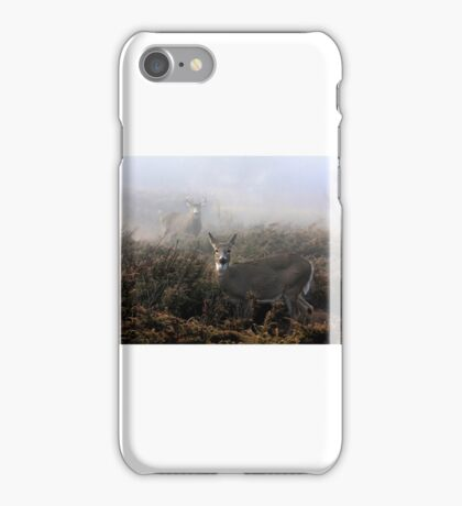 The rut is on! - White-tailed deer  iPhone Case/Skin
