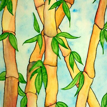 Bamboo by Ravasak