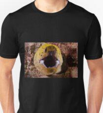 Fimbriated Moray, Mabul, Malaysia T-Shirt