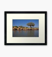 Zim tree Framed Print