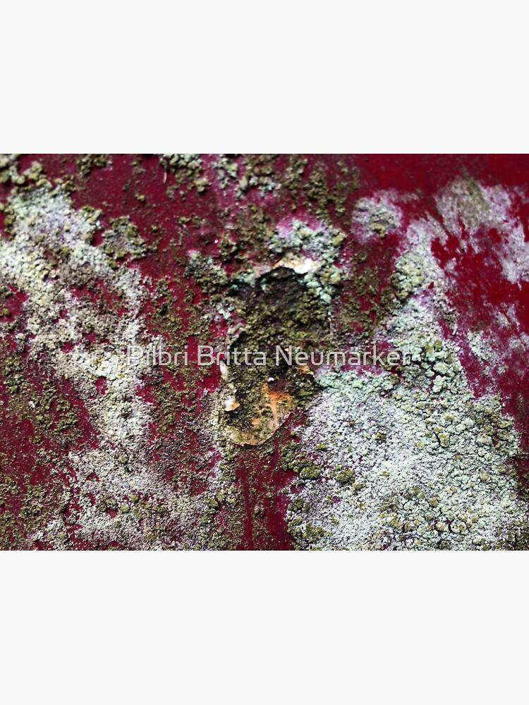 Beautyful Rust 3 Pilbri von pilbri2018