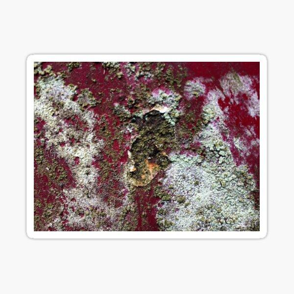 Beautyful Rust 3 Pilbri Sticker