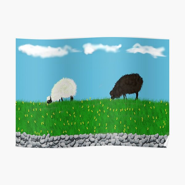 One black one white sheep grazing in the meadow  Poster