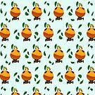 Orange Hanayo Forever by izabelew