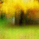 Artscape a magical Tree in Autumn by Imi Koetz
