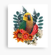 Nature beauty Canvas Print