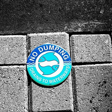 Swimming with the Fishes by jessicahannan81
