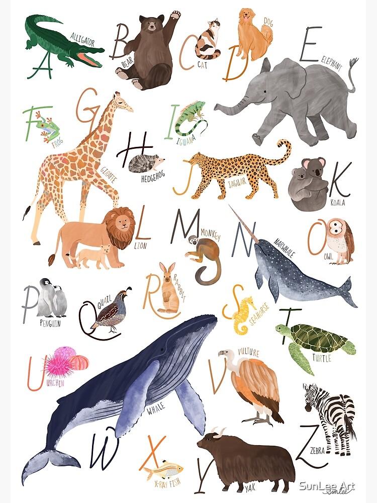Animal Alphabet by sunleeart