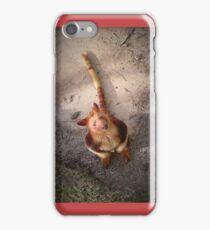 Australian Red Tree Kangaroo iPhone Case/Skin