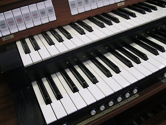Rows of Keys - Section of Organ Keyboard by Kathryn Jones