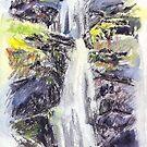 Canonteign Falls, Dartmoor by Barnaby Edwards