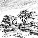 Saddle Tor, Dartmoor by Barnaby Edwards
