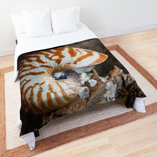 Chambered Nautilus Comforter