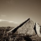 Zennor Quoit, Cornwall by Barnaby Edwards