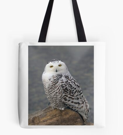 Owl on the Rocks - Snowy Owl Tote Bag