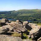Sheeps Tor, Dartmoor by Barnaby Edwards