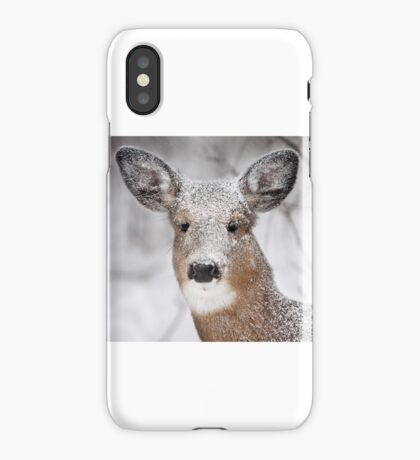I hate snow! - White-tailed Deer iPhone Case/Skin