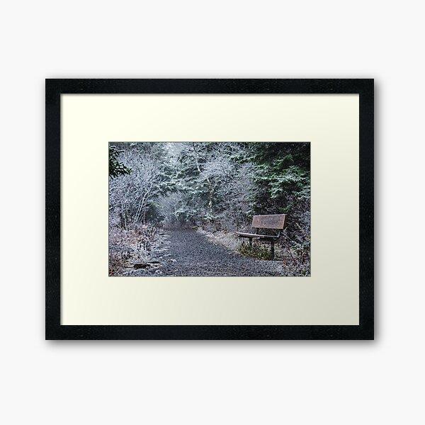 Snowy Bench Framed Art Print