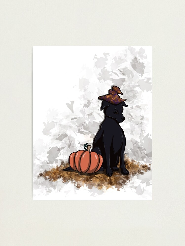 Alternate view of Fall Familiar  Photographic Print