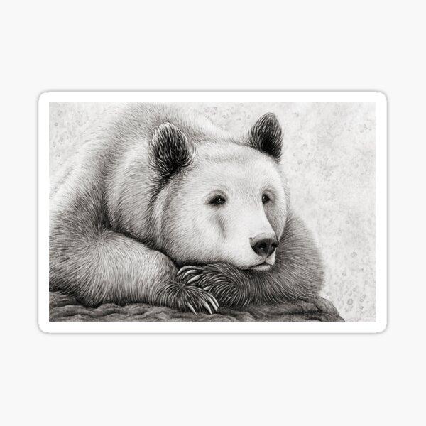 Brooding Bear Sticker