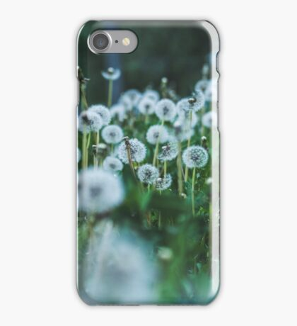 dusky dandelions iPhone Case/Skin