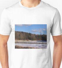 Finally Freezing Unisex T-Shirt