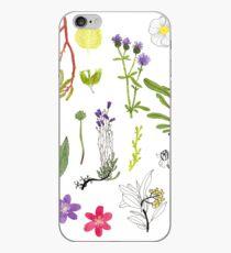 Herbarium / Herbier #2 iPhone Case