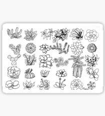 Succulent Chart Sticker