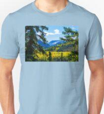 Denali - Golden Valley 2 Unisex T-Shirt