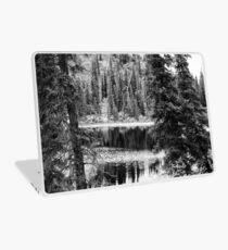 Denali - Reflections in a Pond BW Laptop Skin