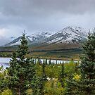Alaska Mountain Range View by Mary Carol Story