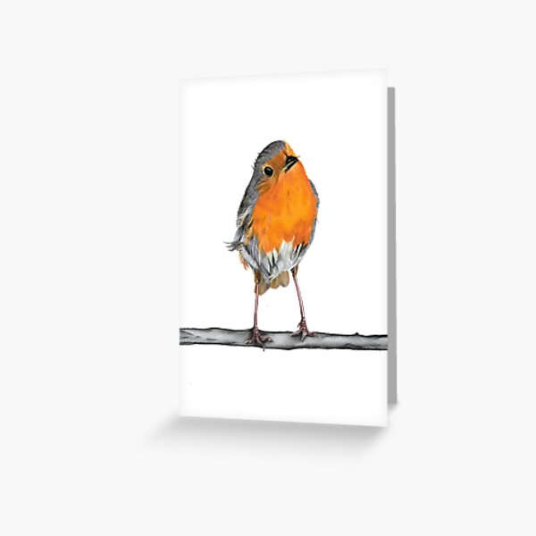 Remembrance Personalised Robin Redbreast Card Robin Card Robin Birthday Card New Home Card When Robins Appear Loved Ones Are Near