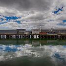Beauty Point, Tasmania by dcarphoto