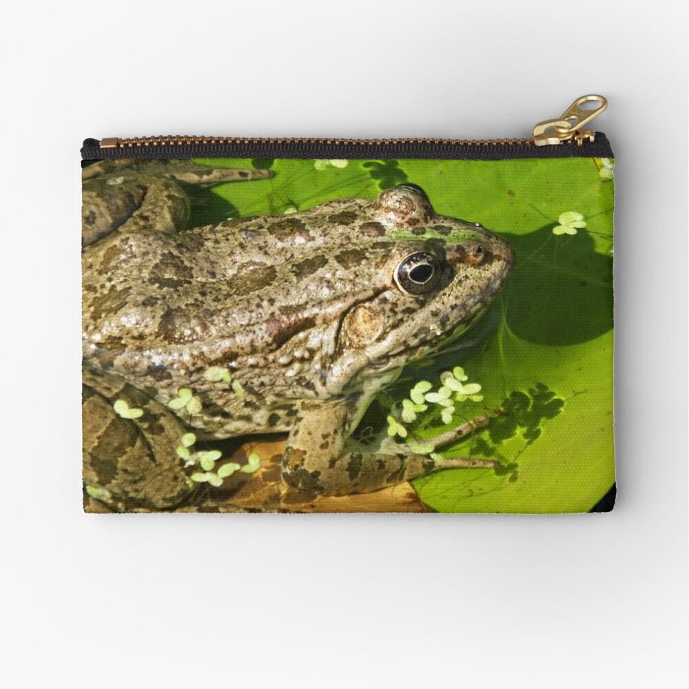 Caucasian Parsley Frog, Georgia Zipper Pouch