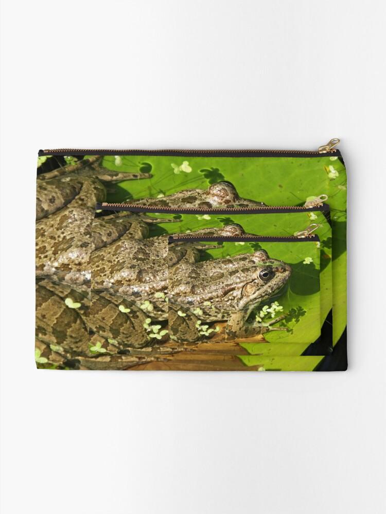 Alternate view of Caucasian Parsley Frog, Georgia Zipper Pouch