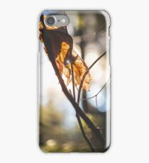 Parched Pinhole iPhone Case/Skin