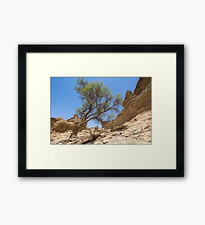 The Beauty that is Sesriem Canyon Framed Print