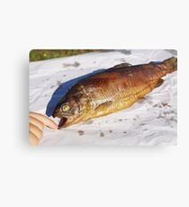 Young boy finger touch Smoked trout (Salmo trutta)  Canvas Print
