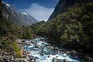 Hollyford River by Yukondick