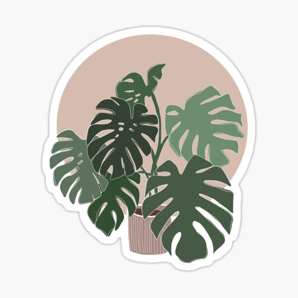 monstera plant Sticker