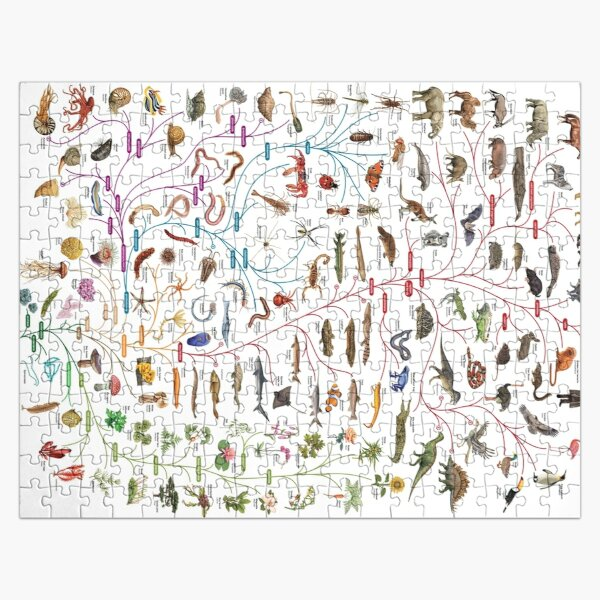 Tree of Animal Life - Evolution is change in the heritable characteristics of biological populations over successive generations Jigsaw Puzzle