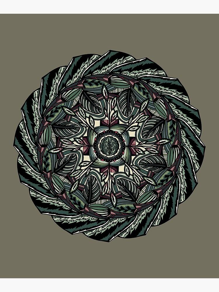House Plants Mandala by akayeart