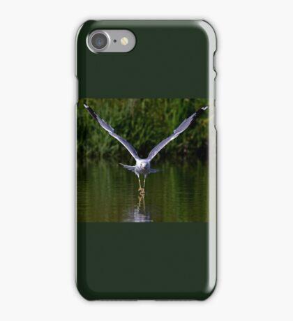 Seagull walks on water iPhone Case/Skin