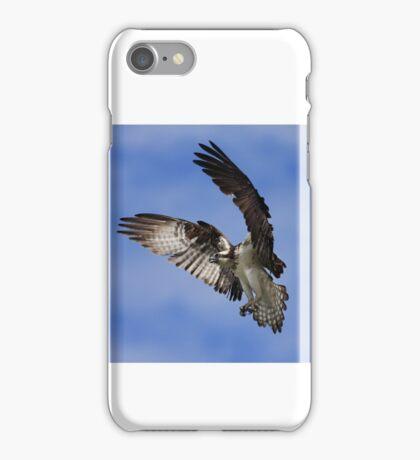 Osprey Wingspan iPhone Case/Skin