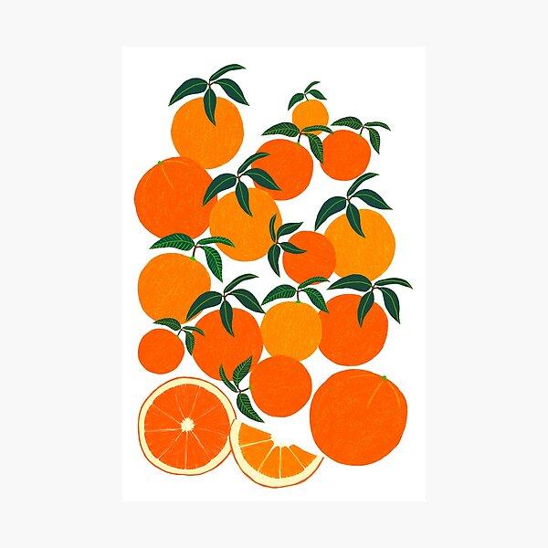Orange Harvest - White Photographic Print