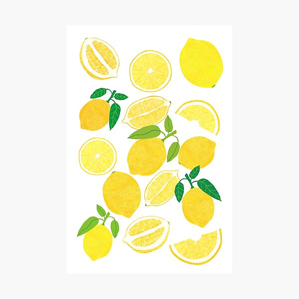 Lemon Harvest Photographic Print