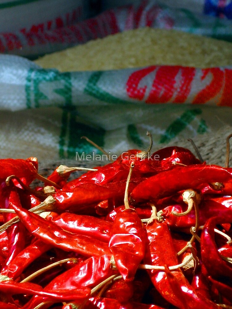 Red Hot Chilli by Melanie Gehrke