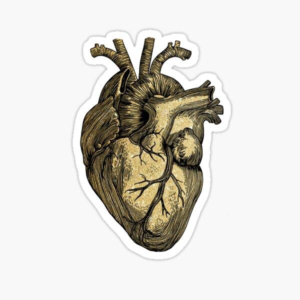 Glittering anatomical heart  Sticker