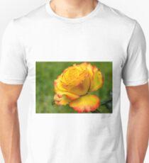 Two toned rose  Unisex T-Shirt