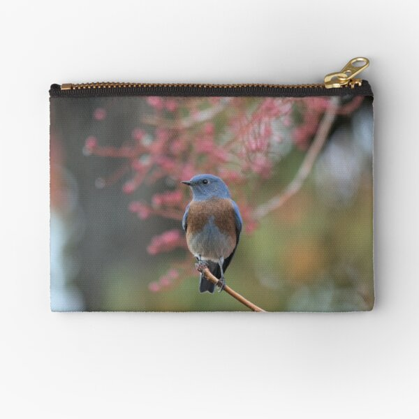 Western Bluebird  Zipper Pouch